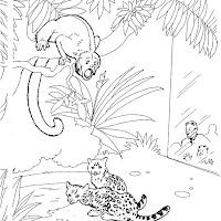animaatjes-dierentuin-84400.jpg