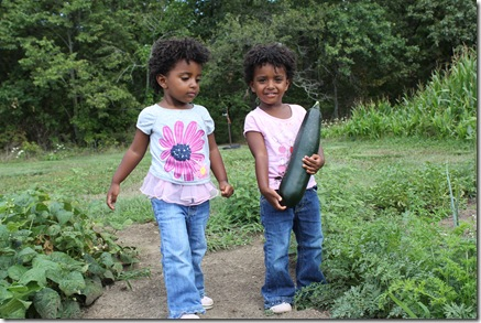 Gardening 671