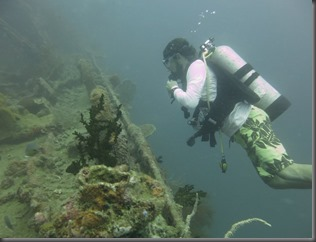 wreck diving in coron from liveaboard