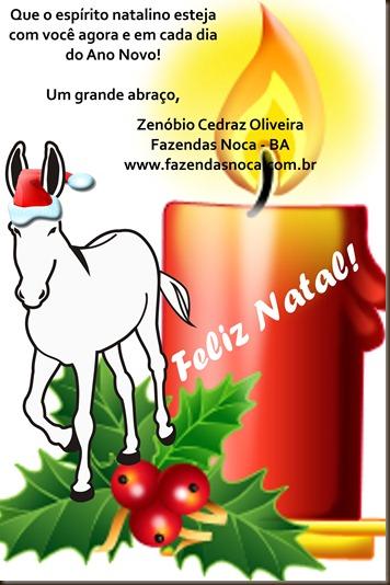 natal2011