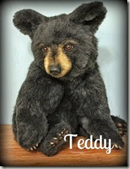 Teddy tag