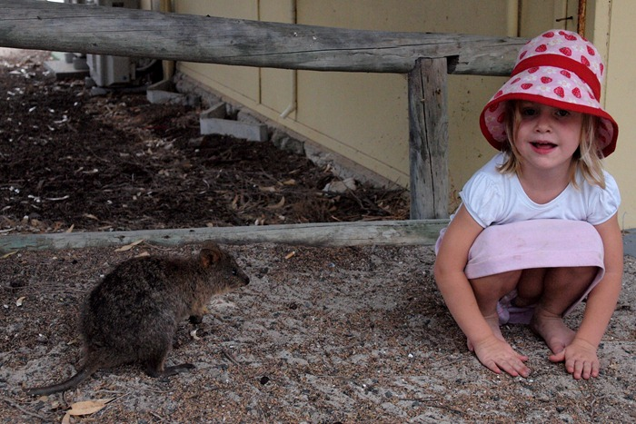 Ms. M and the quokka
