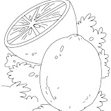 lime-coloring-page-3.jpg