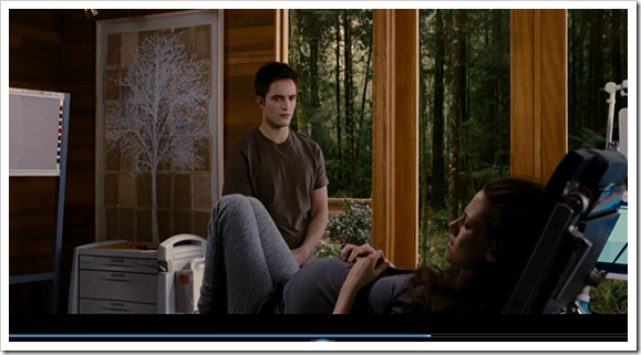 Cullen Home Breaking Dawn