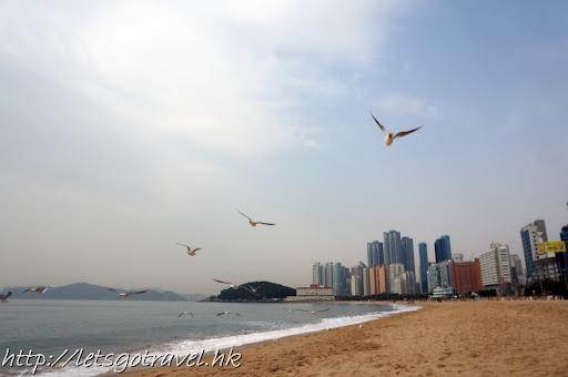 2013Busan0138.jpg