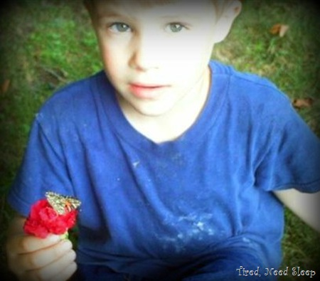 M holding a butterfly on a flower, just before releasing it