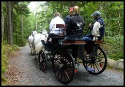 19h-  lunch - beautiful horses and carriage