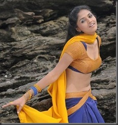 sunaina-hot_navel_photos