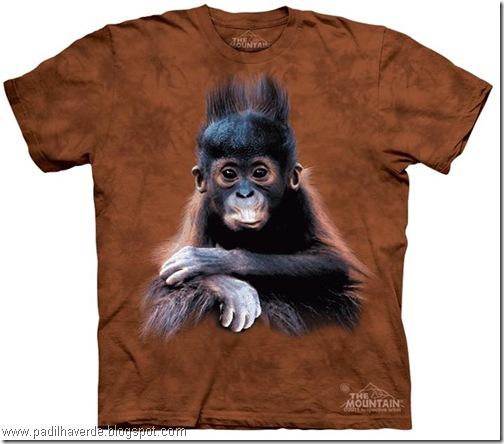 camisetas de Montain-25