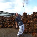 写真2 オイルパームを持つ石川代表オイルパームの一房は20~40kgと非常に重い。/ Prof. Ishikawa held a bunch of oil palm fruits. It usually weighed 20-40kg.