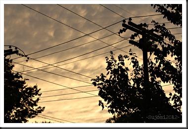 2012 07 26 IMG_5609w