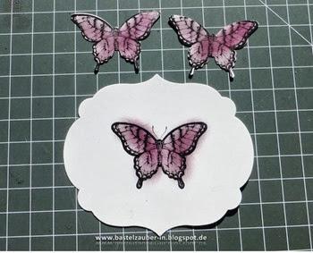 3D-Schmetterling2-fertig