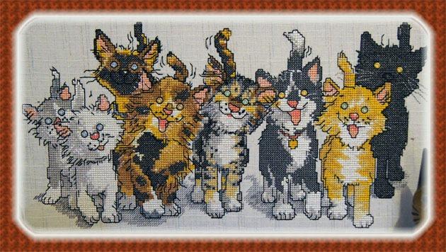 7 katter fulle av liv kom til syne i Designer Diamond deLuxe