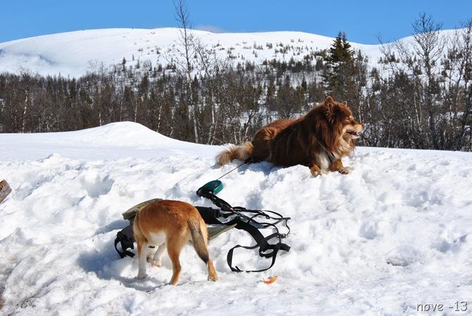 skitur 006