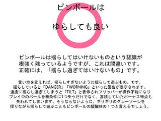 20121118_pinball_slid5.jpg
