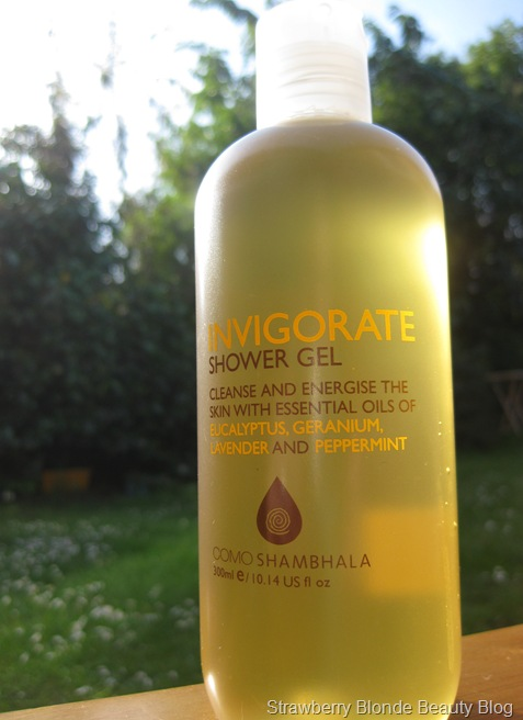 Invigorate Shower Gel
