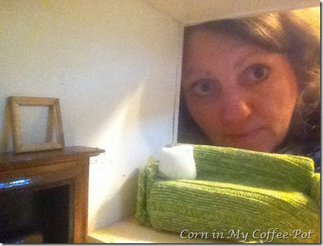 selfies-tinyhouse-porch -porchlight 177