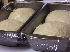 salt-rising-bread 025