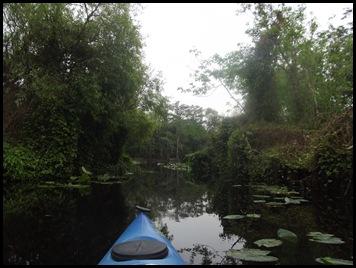 Paddle to Hontoon 201