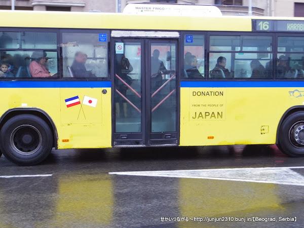 IMGP8707.JPG