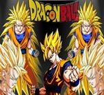 Dragonball 05