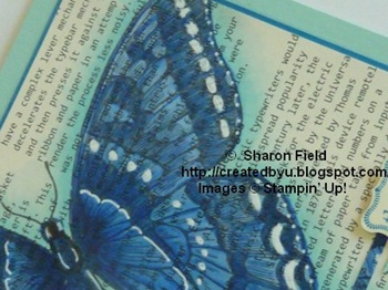 butterfly2sharonfieldjanuary302012cbyu