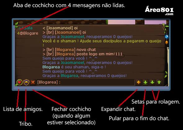chat instruçoes2