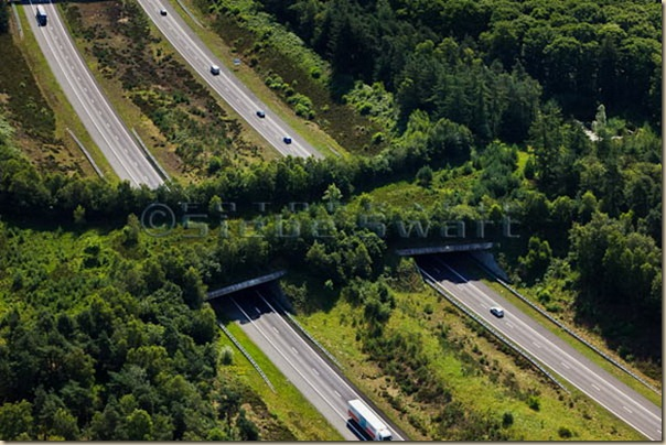 Nederland, Gelderland, Gemeente Barneveld, 30-06-2011; Veluwe met A1 en ecoduct Kootwijk Highway A1 through nature area the Veluwe, the Netherlands. Ecoduct (wildlife bridge) crossing the highway. luchtfoto (toeslag), aerial photo (additional fee required) copyright foto/photo Siebe Swart