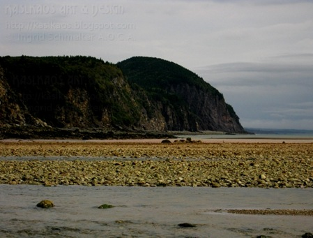 Alma-hill-low-tide72