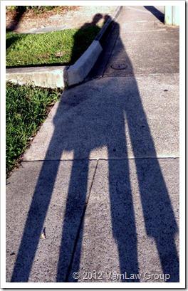 ShadowCastP1030405