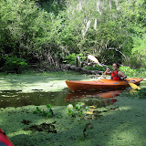 Two OClock Bayou Paddle July 14, 2012 - IMG_0033.JPG