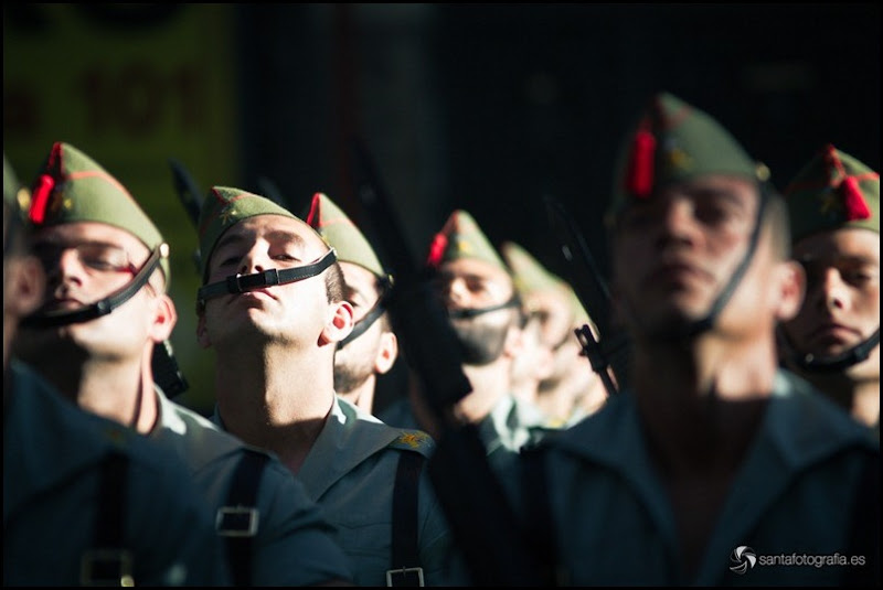 fuerzasArmadas11-30
