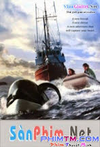 Giải Cứu Willy 3 - Free Willy 3 - The Rescue