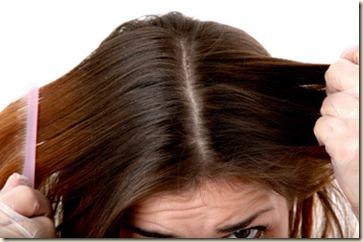 Remedios Caseros para el cabello Grasoso