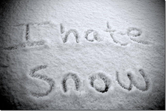i-hate-snow