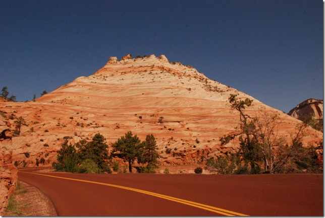 05-01-13 A East Side of Zion SR9 027