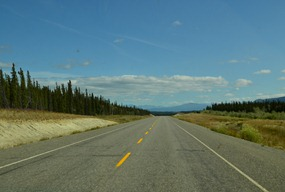 through the elk reserve on Alaska 1 in the Yukon.  Seems hot and dry at 65 degrees F