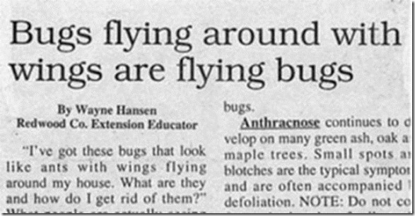 funny-newspaper-headlines-25