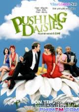 Pushing Daisies Show Tv