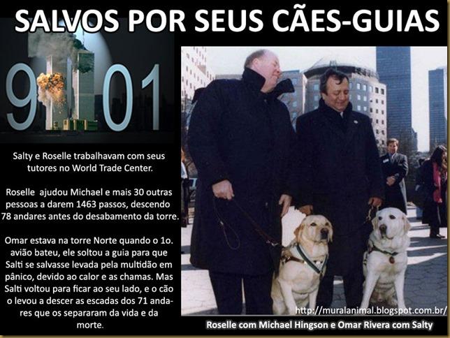 caes-guias-911