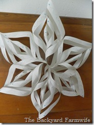 snow flake craft 19