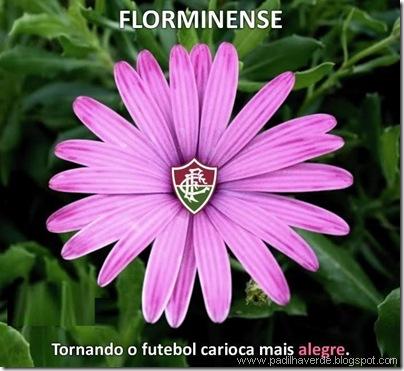 zuando-com-o-escudo-do-fluminense-florminense-simbolo