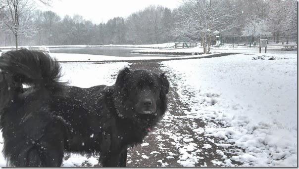 Snow 02 (5b)