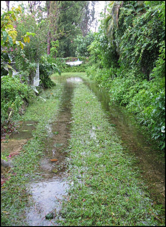 08-27-isaac-flooding5