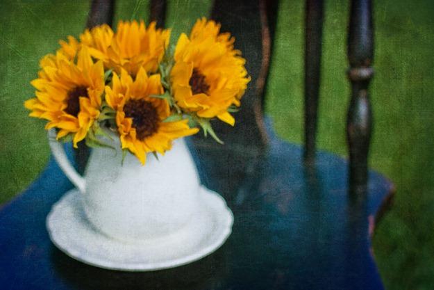 summersunflowers2
