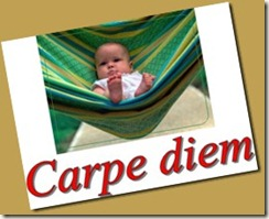 carpe diem_thumb[3]