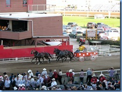 9560 Alberta Calgary Stampede 100th Anniversary - GMC Rangeland Derby & Grandstand Show - Chuckwagon Races