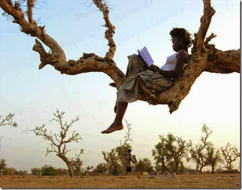 african woman reading on a tree