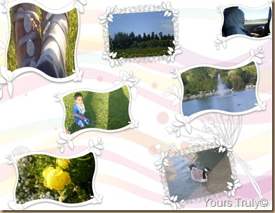 Summer 2011 Collage