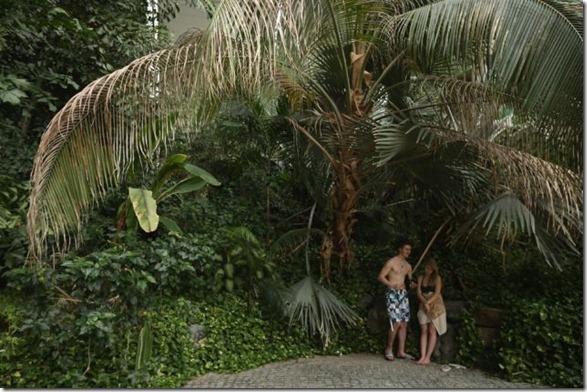 tropical-island-resort-10
